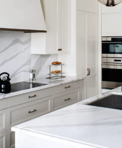 1 Quartz Granite Amp Marble Countertop S Tampa Bay