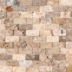 Tuscany Scabas 1x2 Split Face In 12x12 Mesh